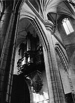 Cathedrale St Etienne: les grandes orgues. Photo: